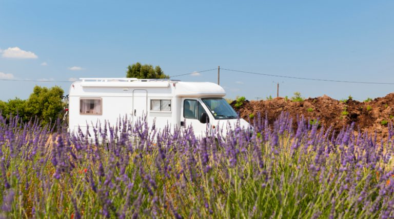 Motorhome in field